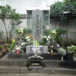 平将門の神社を結ぶと北斗七星に 徳川家康は呪いの力で東京を設計していた!
