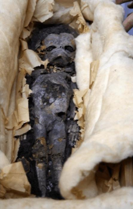 ツタンカーメンの横の部屋で見つかった胎児のミイラ