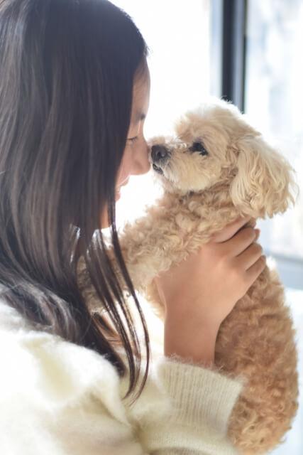 ペット お経 犬
