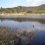 京都の心霊スポット・深泥池 タクシー怪談発祥の深泥池にはかつて鬼が棲んでいた