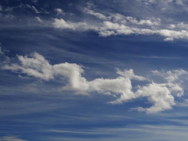 十二支 龍神 雲