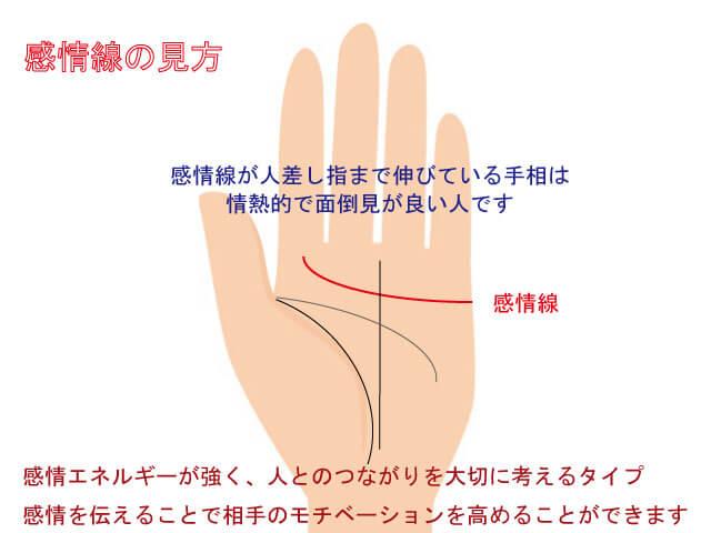 手相 適職 感情線
